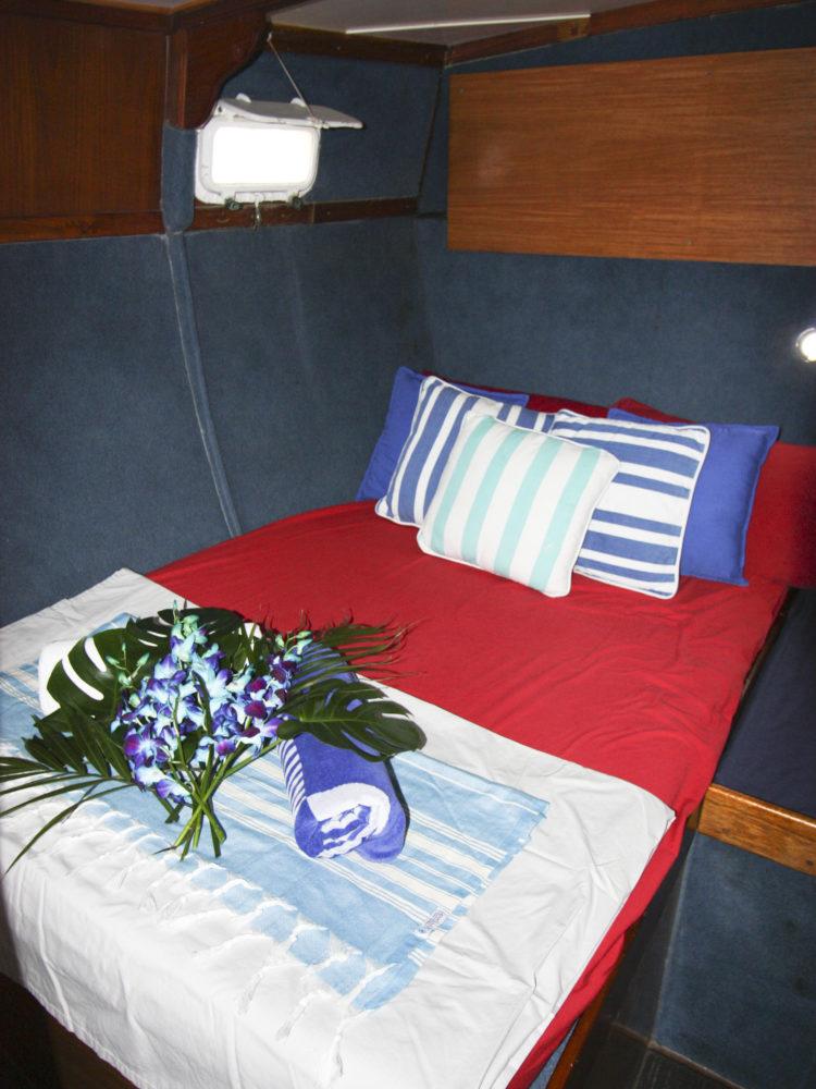 Coral Sea Dreaming - Double Cabin