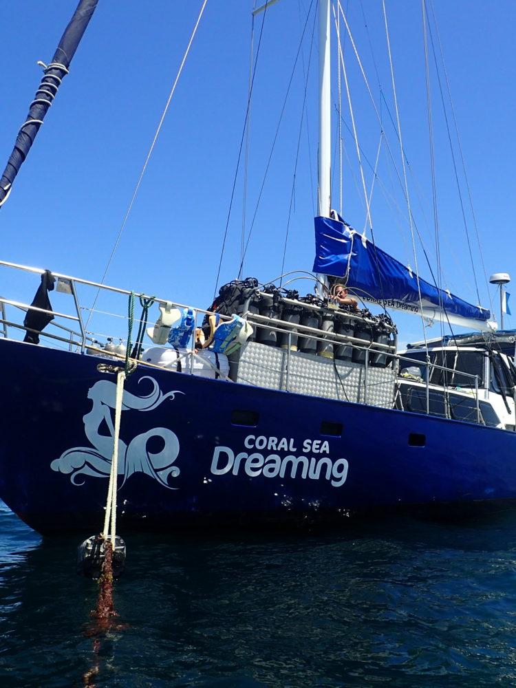 Coral Sea Dreaming - Vessel