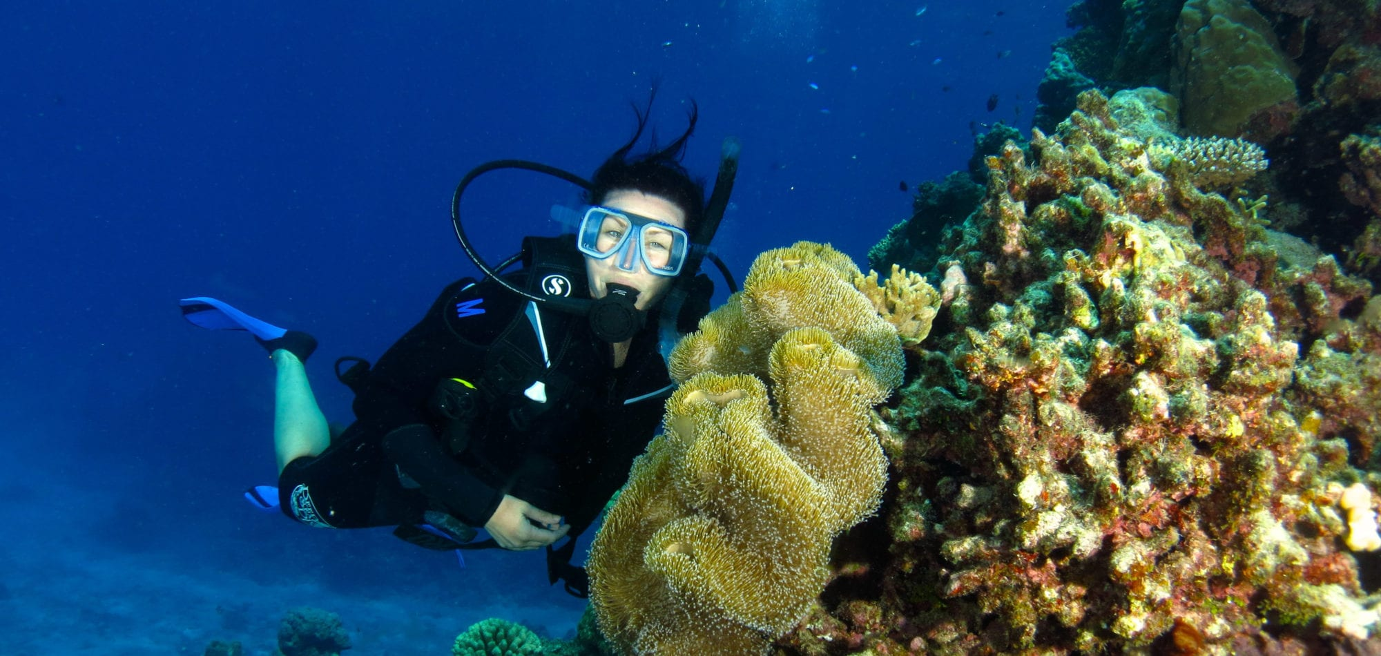 Cairns liveaboard scuba diving - diver enjoying dive holiday in Queensland