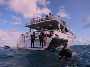 Cairns liveaboard scuba diving - scuba divers prepare to enter the water off the back of the Scubapro boat on the Great Barrier Reef, Queenland