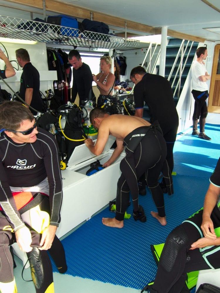 Spirit of Freedom - Dive Deck