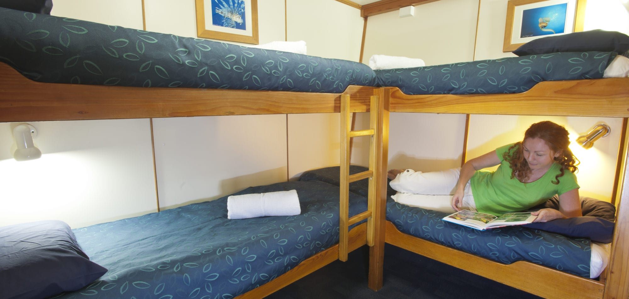 Scuba dive in Australia - quad cabin on Spirit of Freedom Great Barrier Reef dive boat
