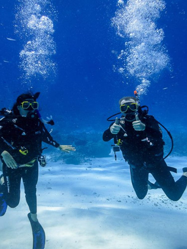 Sea Esta scuba diving trip - Divers on Flinders reef