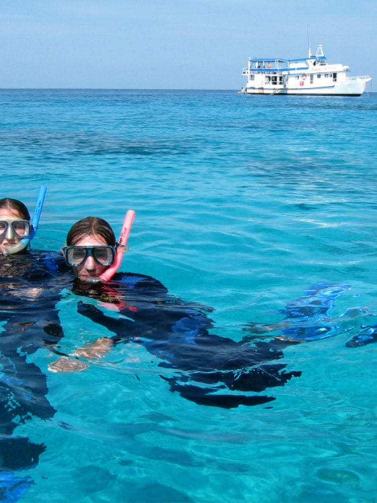 Snorkelling in Australia - Snorkellers in the water from Sea Esta ship