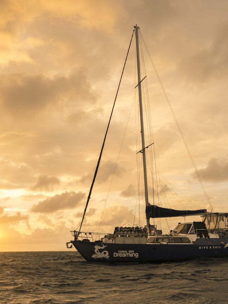 Coral Sea Dreaming Vessel
