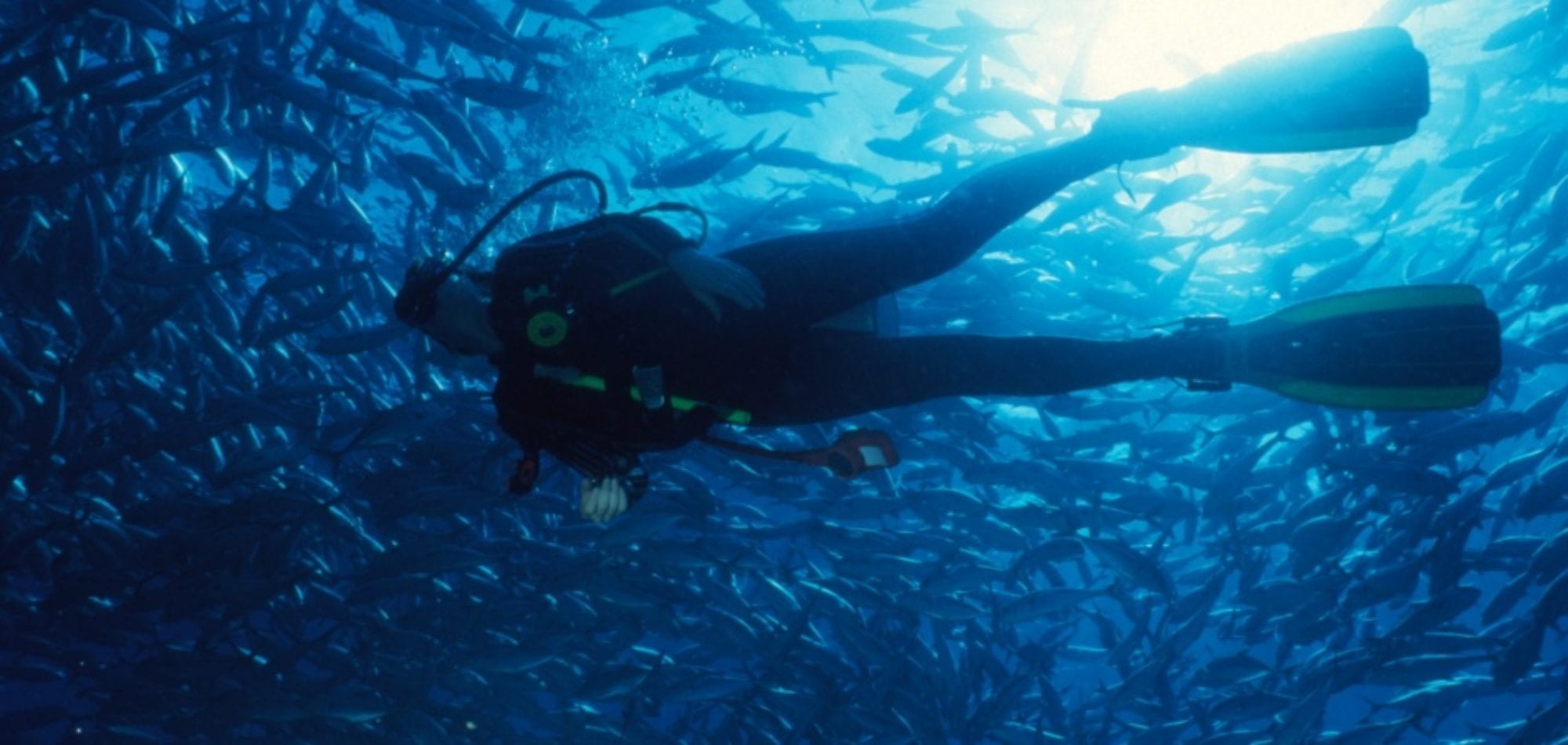 Scuba dive Australia - diver on the Great Barrier Reef, Australia