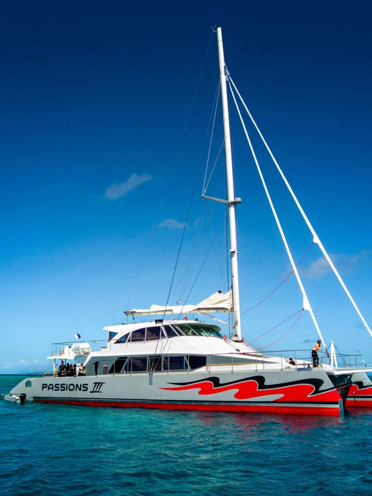 Cairns day trip - Passions of Paradise sailing catamaran