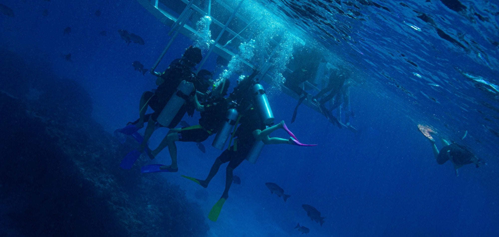 Cairns scuba diving day trip - divers on decompression stop below Dreamtime boat
