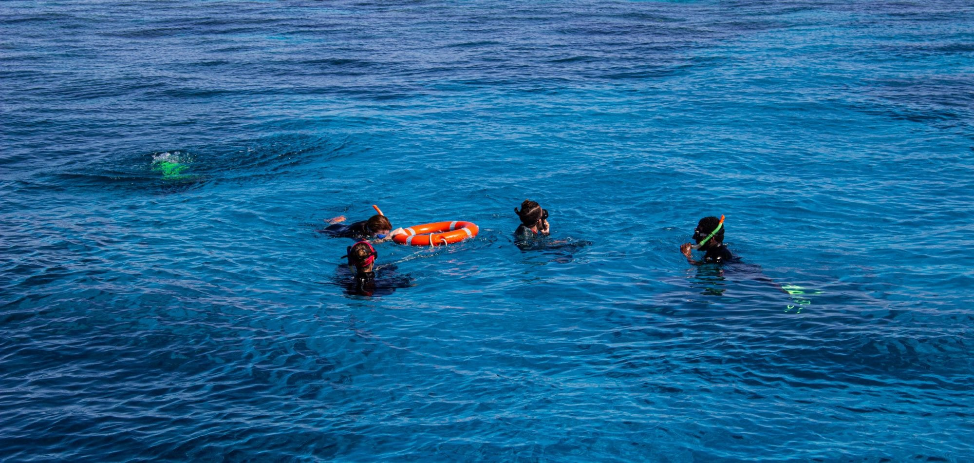 Cairns scuba diving day tour - snorkelers enjoying the Great Barrier Reef