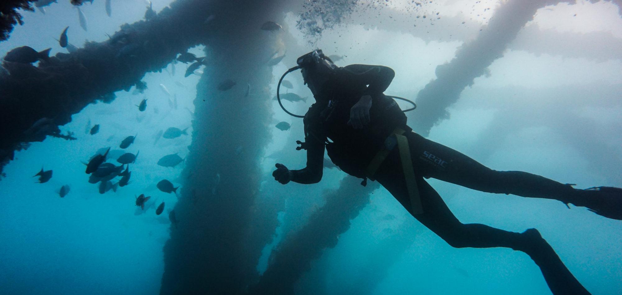 Navy Pier - Diver